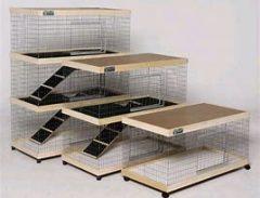 Luxury indoor rabbit pen 240x183 - Caring for your Rabbit