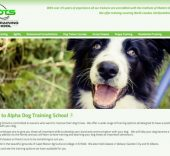 Alpha Dog Training School