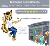 Clarendon Cross Canines