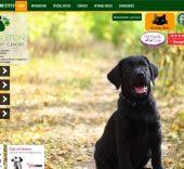 Congleton Veterinary Center