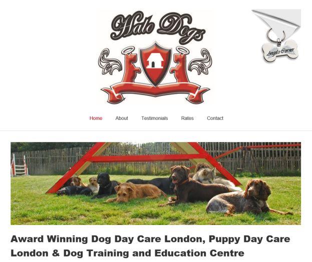 Halo Dogs Ltd