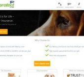 Pet Protect pet insurance