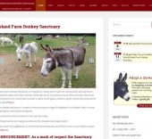 Island Farm Donkey Sanctuary